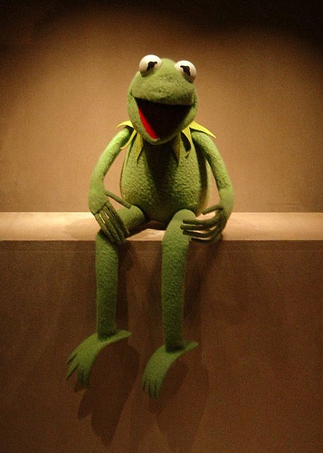 Kermit the Frog at The Smithsonian